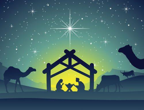 A Pandemic Christmas